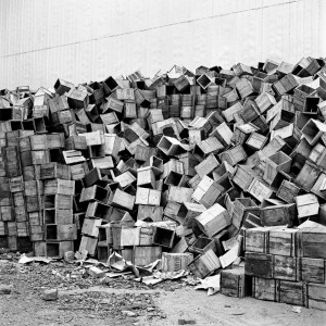 Vivian-Maier-Just-a-pile-of-boxes-to-you