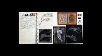 Tarika's IGCSE Art portfolio